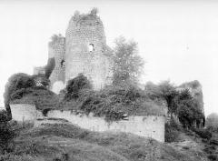 Ruines du château - Ensemble sud-ouest