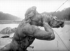 Domaine national de Versailles - Parc. Char d'Apollon : Triton