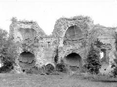 Ruines du château - Vue intérieure de la façade d'entrée