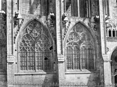 Cathédrale Notre-Dame - Façade sud : fenêtres du bas-côté