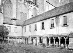 Cathédrale Saint-Pierre - Cloître : galerie d'arcades