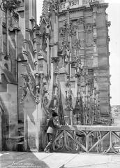 Cathédrale Notre-Dame - façade nord : Galerie et pinacles