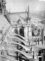 Cathédrale Notre-Dame - Façade sud : arcs-boutants et transept pris du haut de la tour sud-ouest