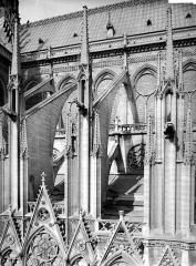 Cathédrale Notre-Dame - Façade sud : arcs-boutants de l'abside