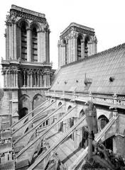 Cathédrale Notre-Dame - Façade sud : arcs-boutants et toiture, vus vers l'ouest