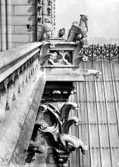 Cathédrale Notre-Dame - Tour nord : balustrade et chimères à l'angle sud-est