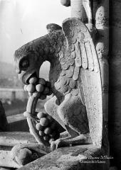 Cathédrale Notre-Dame - Galerie de la façade ouest : chimère