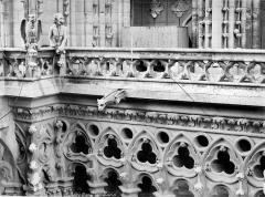 Cathédrale Notre-Dame - Galerie de la façade ouest : balustrade et chimères