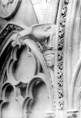 Cathédrale Notre-Dame - Départ d'arcatures : chimère