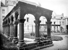 Cathédrale Saint-Pierre - Cloître : vue d'ensemble des vestiges