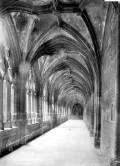 Cathédrale Notre-Dame - Cloître : vue intérieure de la galerie sud