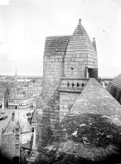 Cathédrale Saint-Pierre Saint-Paul - Tour nord : Couronnement de l'escalier