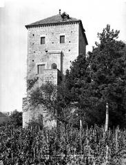Château de Gevrey - Tour