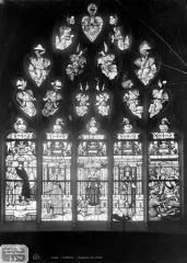 Cathédrale Notre-Dame - Vitrail du bas-côté nord : Jugement de Salomon