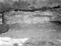 Abri du Cap-Blanc à Laussel - Frise sculptée préhistorique