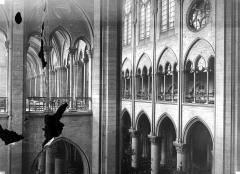 Cathédrale Notre-Dame - Vue intérieure de la nef et du transept sud : Triforium