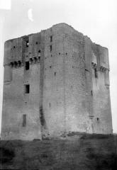 Donjon de Moricq - Ensemble nord-ouest