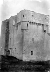 Donjon de Moricq - Ensemble sud-ouest