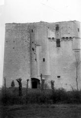 Donjon de Moricq - Ensemble ouest