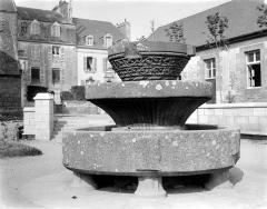 Vasque de Keilinsky, ou de Kerliviry - Vue d'ensemble