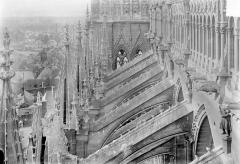 Cathédrale Notre-Dame - Façade sud : Galerie supérieure, arcs-boutants et pinacles, vus vers l'ouest