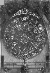 Cathédrale Notre-Dame - Vitrail, rose du transept nord