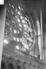 Cathédrale Notre-Dame - Vitrail, grande rose