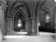 Cathédrale Saint-Etienne - Crypte : Vue d'ensemble