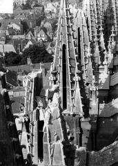 Cathédrale Notre-Dame - Tour sud : Pinacles