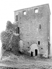 Château - Tour : vue d'ensemble