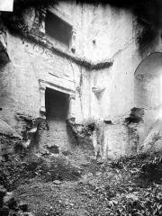 Restes du château - Vue intérieure