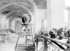 Cathédrale Notre-Dame - Dépôt lapidaire