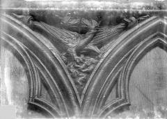 Cathédrale Saint-Pierre - Stalles, écoinçon : animaux fantastiques