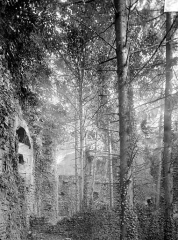 Château de Thil (ruines) - Aile ouest : Grande salle avec cheminées
