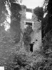 Château de Thil (ruines) - Aile est