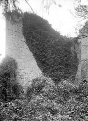 Château de Thil (ruines) - Donjon
