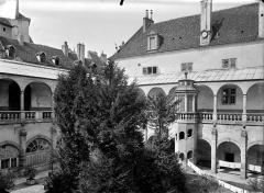 Hôtel-Dieu - Cloître : Vue d'ensemble