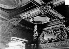 Ancien collège des Jésuites, actuellement Hospice général Museux - Bibliothèque : Plafond