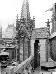 Cathédrale Notre-Dame - Pinacle de la façade sud : Détail montrant l'effritement et la désagrégation de la pierre