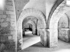 Eglise collégiale Saint-Martin - Crypte