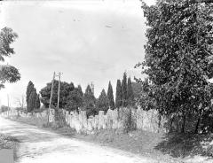 Cimetière gallo-romain - Pierres tombales relevées