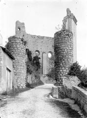 Château baronial ou des Evêques de Poitiers - Entrée
