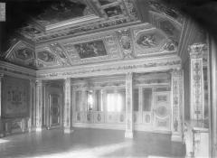 Palais du Luxembourg, actuellement Sénat - Salon, peintures