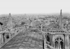 Cathédrale Notre-Dame - Couverture provisoire de la charpente de la nef, vue en dessus
