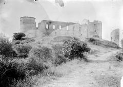 Château des Templiers - Ensemble extérieur: ruines