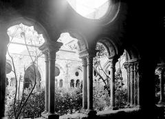 Abbaye de Fontfroide - Cloître: galerie et cour