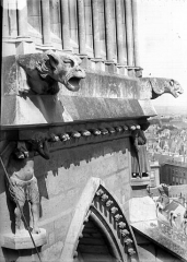 Cathédrale Notre-Dame - Cariatides et gargouilles de l'abside
