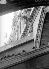 Cathédrale Notre-Dame - Cariatides et gargouilles de la nef, au nord Hercule