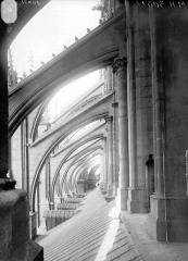 Cathédrale Notre-Dame - Arcs-boutants de la nef, au nord