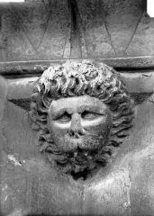 Cathédrale Notre-Dame - Tête d'amortissement, mufle de lion
